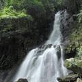 Photos: 大滝