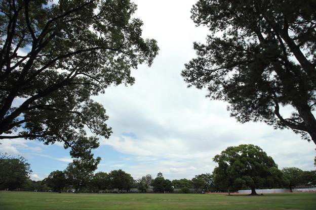 二の丸公園から熊本城