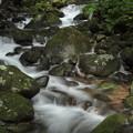 寒川水源が流れる渓流