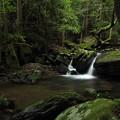 Photos: 箱滝下流の流れ