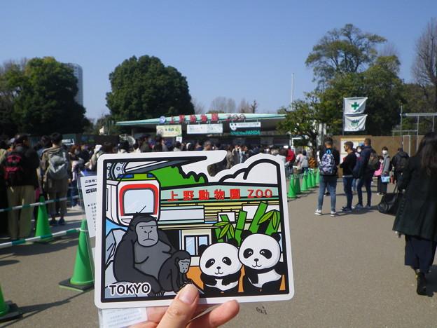 ご当地フォルムカード上野動物園