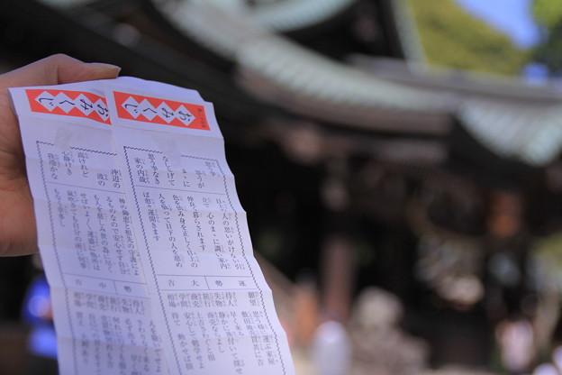 筑波山神社おみくじ