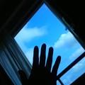 写真: 空へ