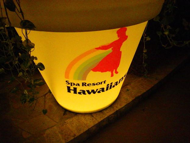 Hawaiiansへようこそ