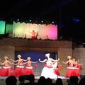 Hula Show