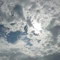 Photos: 天気雨の目