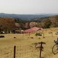 写真: めいめい牧場にて。