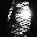 写真: 第138回モノコン 秋陽