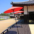 写真: 傘