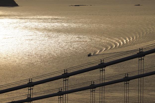 Photos: 大橋とともに