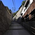 写真: 坂の途中で