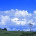 Photos: 雲と丘と
