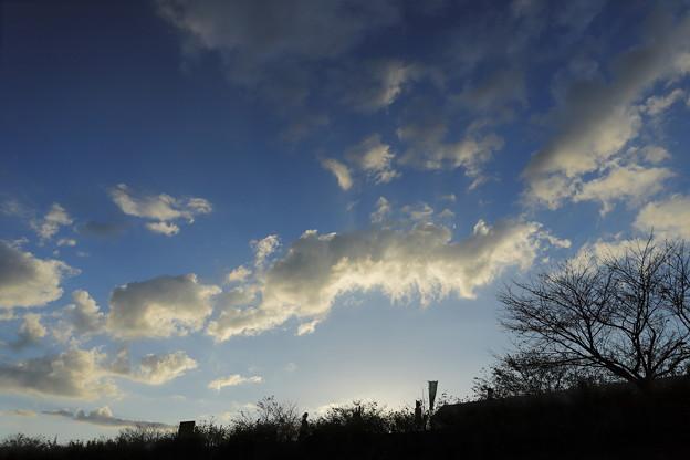 写真: 明日晴れるかな