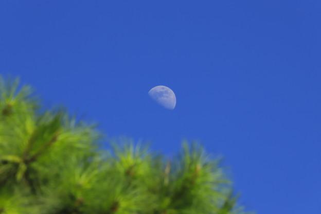 青空に白い月