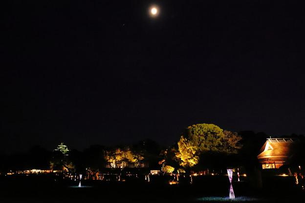 月夜の庭園