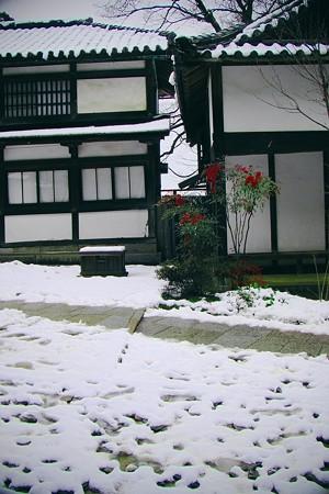 雪の金刀比羅2