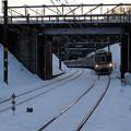 写真: 雪面に延びるレール