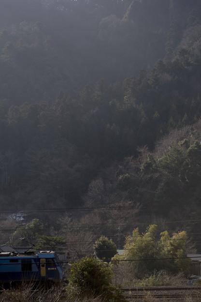 写真: 春を待つ高尾山麓