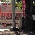 写真: 小さな神社にて
