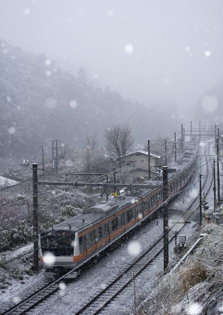 春分の雪1