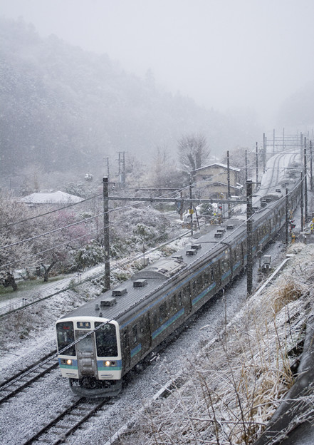春分の雪2