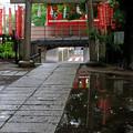写真: 雨上がりの神社