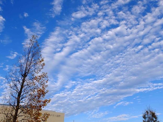 かっきーんとした空