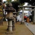 Photos: 鳥居越しの都営5300形
