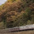 Photos: 高尾山麓をゆく