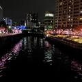 Photos: 冬の桜並木