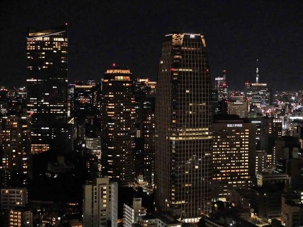 大都会の夜
