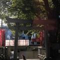 朝日射す神社