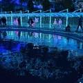 Photos: 水の中の宝石
