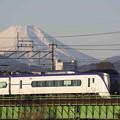 Photos: 富士と列車の白さが増す頃