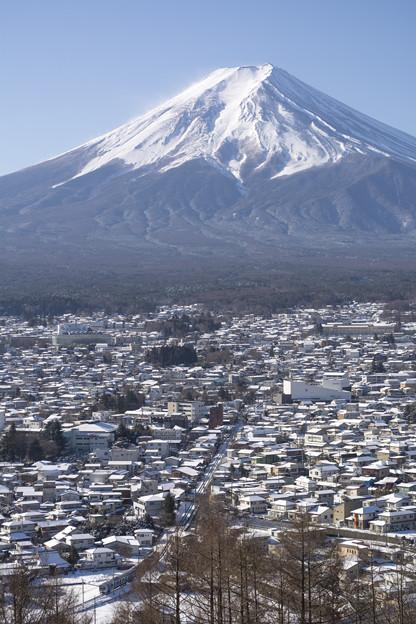 富士が見下ろす白い街並み
