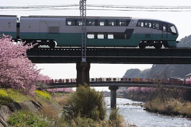 リゾート列車が春をゆく