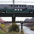 写真: リゾート列車が春をゆく