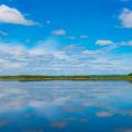 写真: ー釧路湿原ー