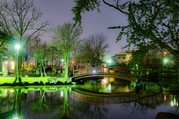 ー公園の夜景ー