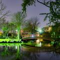 写真: ー公園の夜景ー