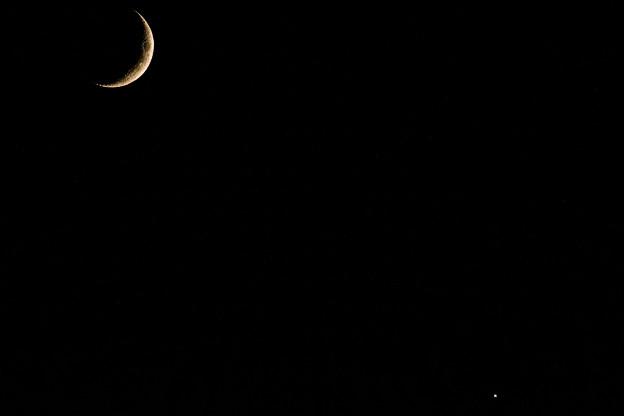 写真: ー三日月と金星ー