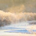 写真: ー極寒の地に生きるー