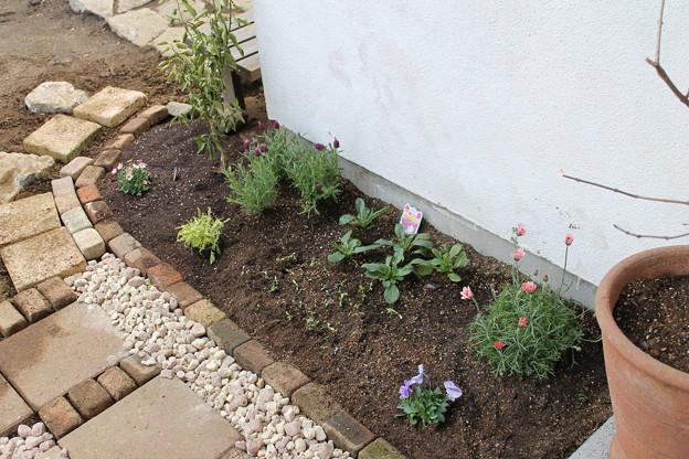 写真: 花壇づくり