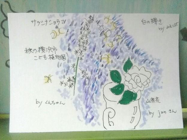 写真: くんちゃんのサラシナショウマとjunさんの山茶花