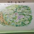 hayacyanさんのアート