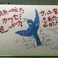 写真: お魚くわえたカワセミ