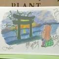 写真: ひまうさぎ勝浦海岸を行く