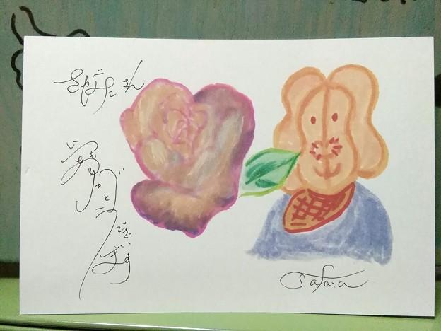Photos: さがみこさんへの絵手紙