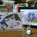 Photos: 4-28 ピースサインをする令和の猫ちゃん