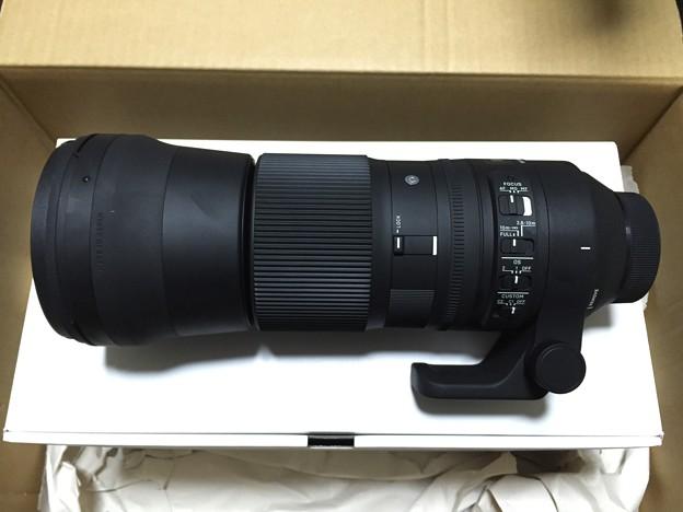 写真: SIGMA C 150-600